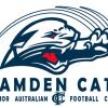 Camden Cats