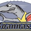 Holroyd Parramatta Goannas