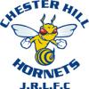 Chester Hill Hornets