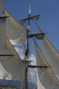 Tall Ships - part of the Wooden Boat Festival