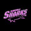 Gladesville Sharks Womens