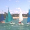 303s in action 20+ knots!