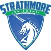 Strathmore Unicorns