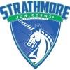 Strathmore Unicorns