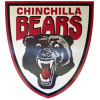 Football Chinchilla