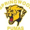 Springwood AFC