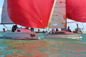 Tigris tussles with Up'n Go to dead heat